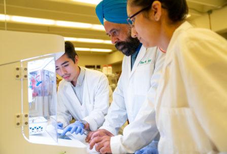FAMU College of Pharmacy Prints 3D Cornea Using Human Cells